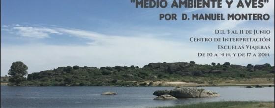 CARTEL MEDIO AMBIENTEweb